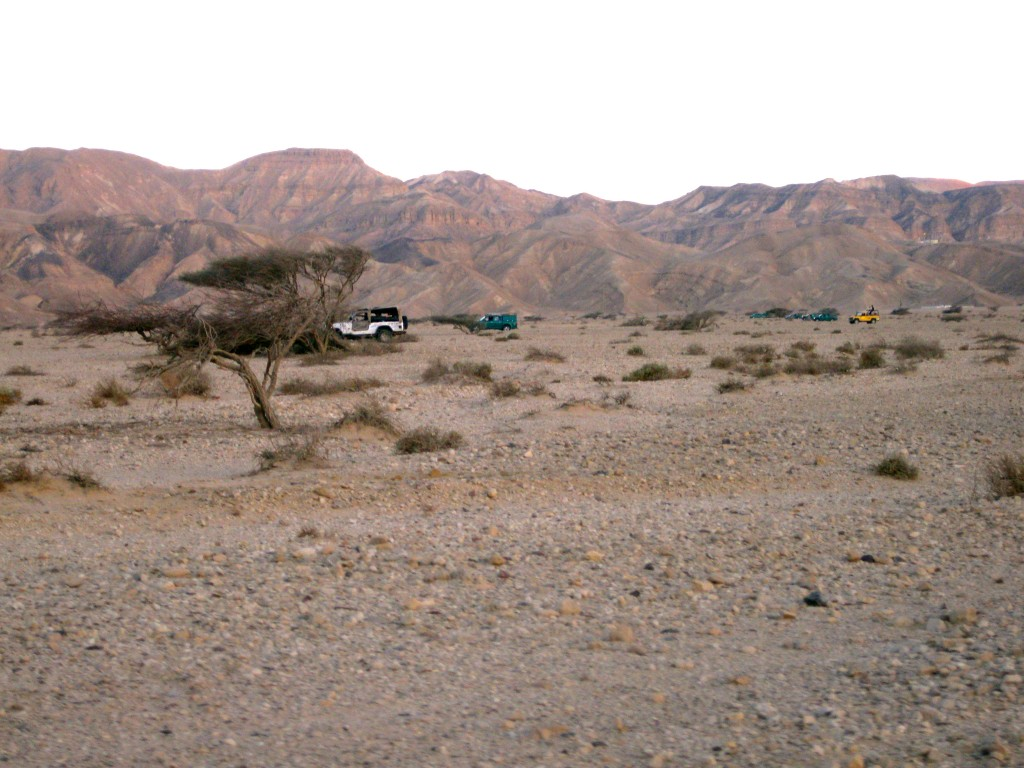 Trucks/SUVs moving across desert with hills in background
