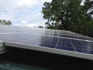 Rooftop solar array with Oregon oak in background Photo: Kai Williams