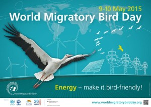 World Migratory Bird Day Poster featuring Siberian crane flying in front of drawn energy power sources and map of world